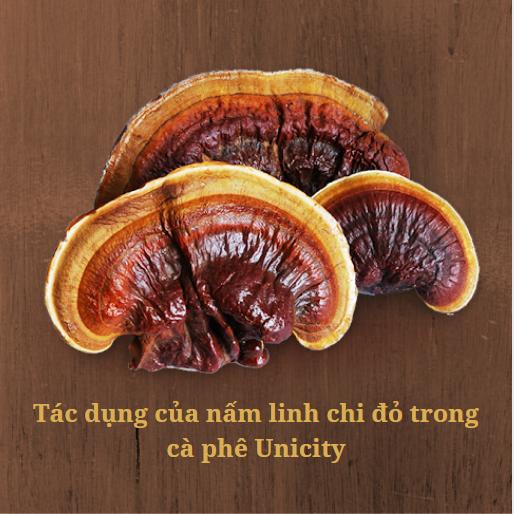 ca-phe-linh-chi-unicity-nubeauty-6