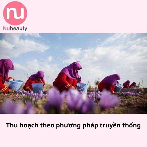 cach-phan-biet-nhuy-hoa-nghe-tay-that-gia-nubeauty-10.jpg